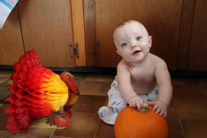 Turkey, pumpkin, baby, Thanksgiving